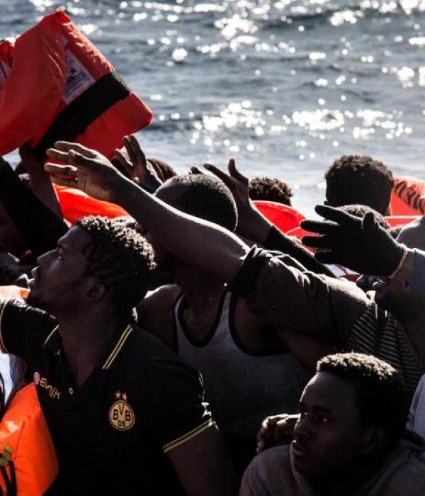 globalharmonyimmigrants (6)